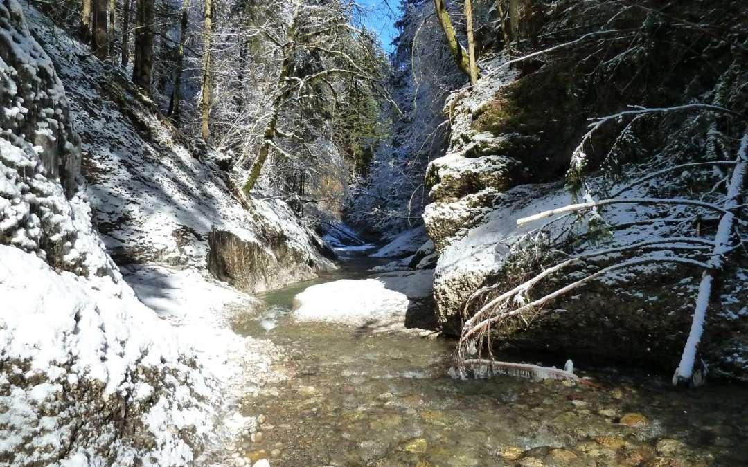 Goldwaschen, Kursprogramm Winter 2018/19