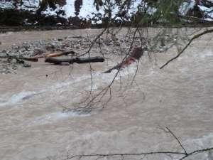 Hochwasser Grosse Fontanne