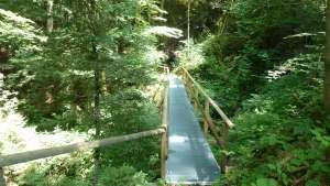 Oberhaselholz, Hasle